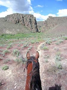 Riding Hillbillie Willie the Standardbred in Owyhee