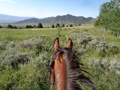Idaho's City of Rocks endurance ride aboard Hillbillie Willie