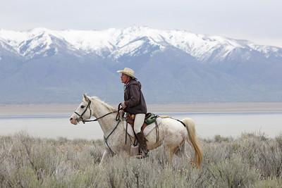 Utah's Antelope Island endurance ride