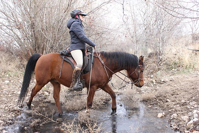 Training: there aren't many water crossings in the Owyhee desert!