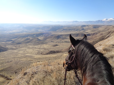 Riding one of my best pals, Dudley, in the beautiful Owyhee country