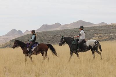 Antelope Island endurance ride, Utah