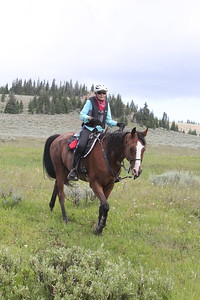 Winner of the Big Horn 100 endurance ride, Wyoming, Suzie Hayes and Sanstormm