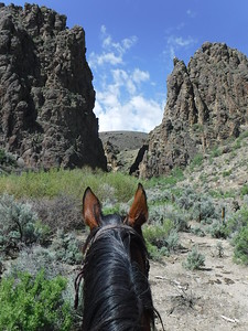 Riding Jose Viola in Owyhee, Idaho