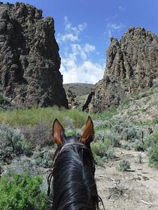 Riding Jose Viola in Owyhee, Idaho