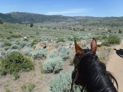 Riding Jose Viola in the Owyhee mountains below the historic ghost town of Silver City, Idaho