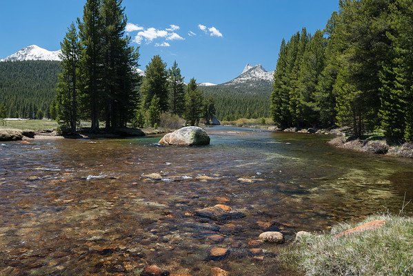 california; river; sierra nevada; tuolumne meadows; tuolumne river; yosemite national park The water is shallow and very, very clear.