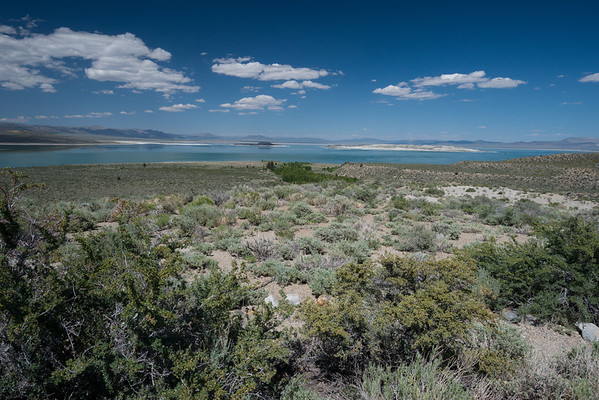 california; california state parks; inyo national forest; lake; mono basin national scenic area; mono lake; sierra nevada This view is right from the observation platform behind the Mono Basin Visitor Center in Lee Vining.