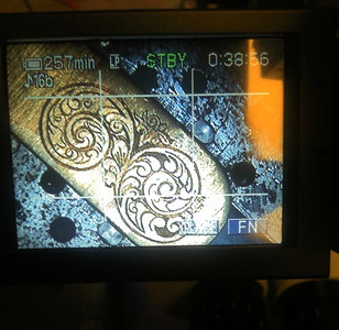 Viewthrough the camcorder screen that is hooked up to my Meiji TR-8 Microscope.
