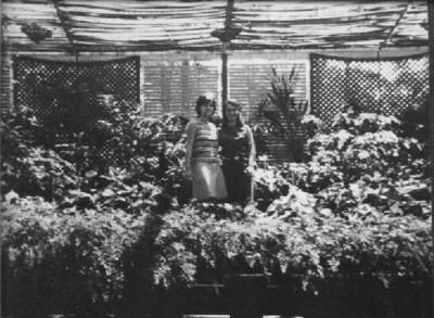Estufa de Andrada 1968 Elza e Teresa Fontinhas