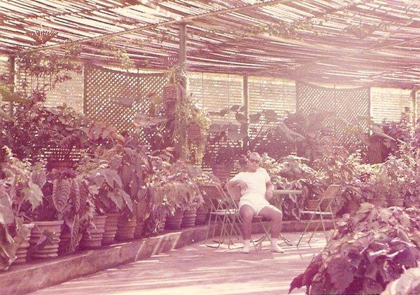 Andrada- Estufa 1968 Fernando Moreira