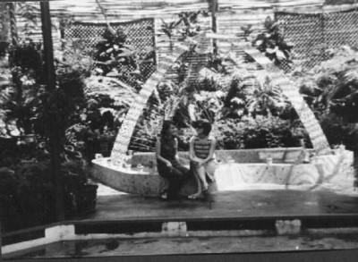 Andrada- Estufa 1968 Elza e Teresa Fontinhas