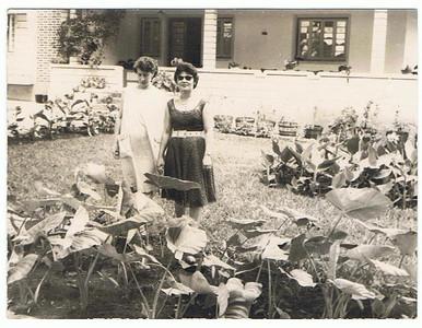Deolinda Guerreiro e Ivone Silva
