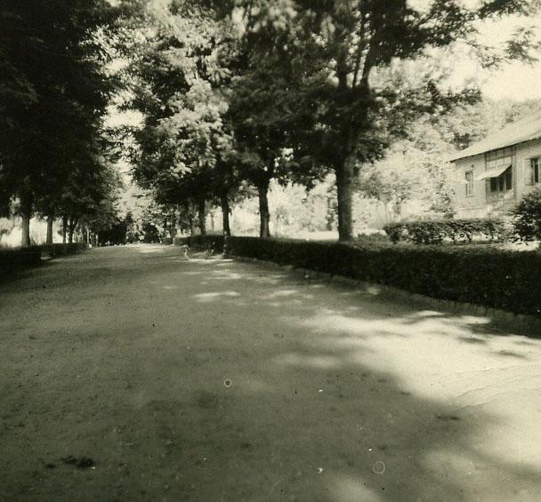 Rua Dundo