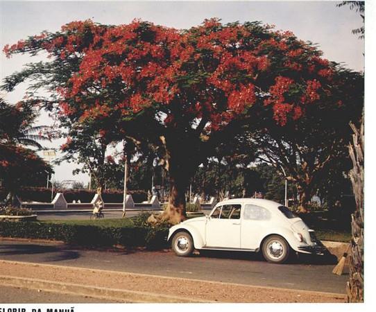 """Esquina da rua 13 ( carro) com a rua 10 ( bicicleta) Muro dos""""bicos"""" a' volta da Casa do Pessoal foi construido apos 1974"""