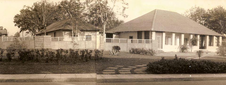 Biologia - Museu do Dundo