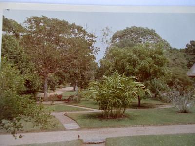 Parque de Aclimacao