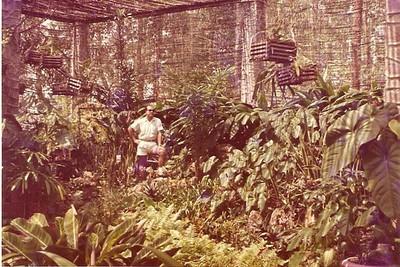Dundo- Estufa 1968 Fernando Moreira