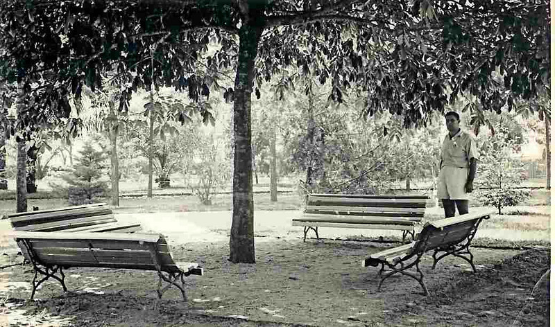 Samokinda - Parque de Aclimação