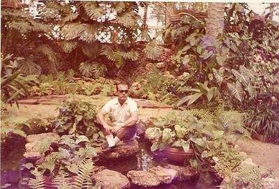 Estufa 1968 Fernando Moreira