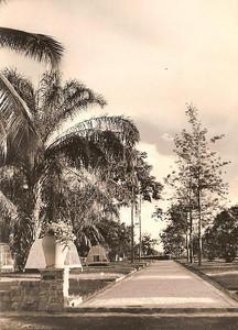 Jardim do Dundo - Parque de Aclimação