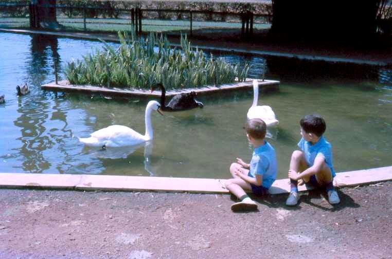 Parque Aclimação filhos de Seixas