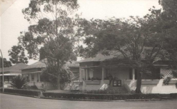 K241, 1971,-  Dundo