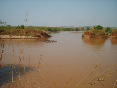 Hipopotamos da Lunda-no rio Luembe -Andrada