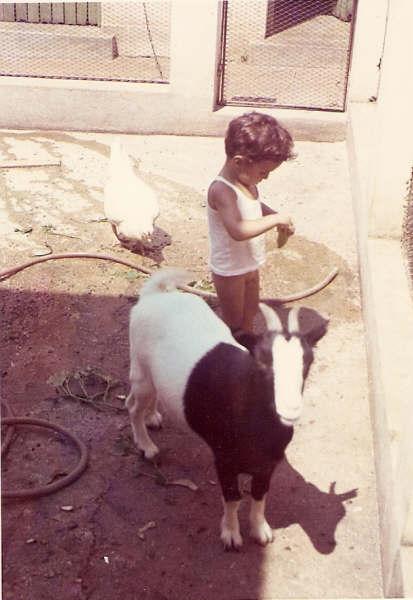 """Joao """" Moreira Duarte"""" e cabrito e galinhas"""