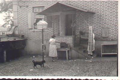Num quintal antigo