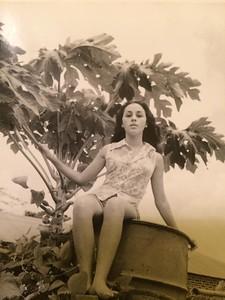 Andrada 1974