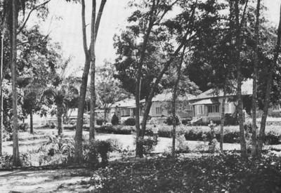 Cossa 1963