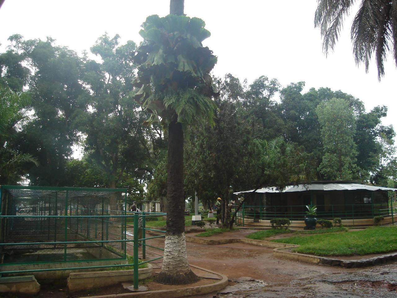 O pequeno zoo junto à K18.