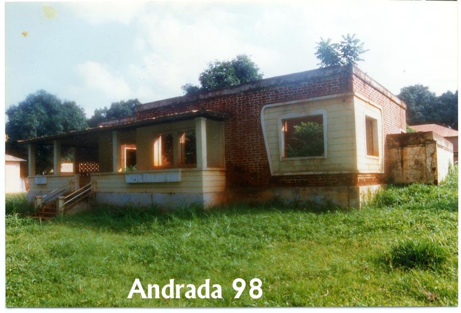 Casa aonde os Adalbertos viveram. Arvores crescendo no quarto da Zelinha