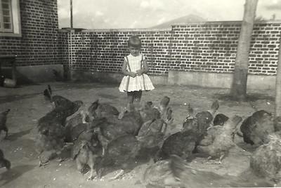 1962, Andrada Guida Tavares e cassumbe