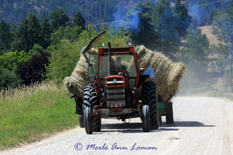 Moving hay bales
