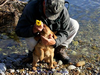 Back to the river! She loves Jack!