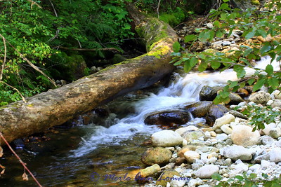 Sweathouse Creek
