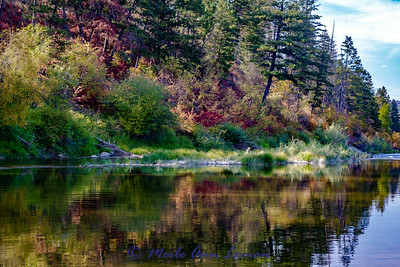 Clark Fork Reflections IMG_9717