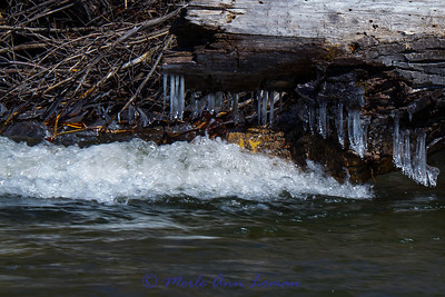 Ice on the upper Bitterroot River in April