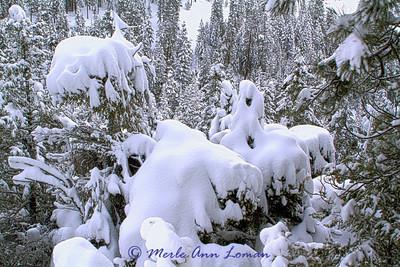 Snow_IMB_2132-H