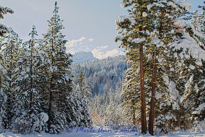 Snow_IMG_2199_H