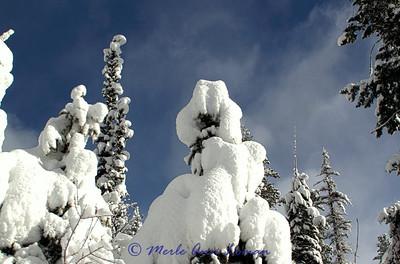 Snow_IMG_2096_H