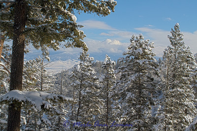 Snowscape_IMG_2268-H