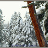 20140209-IMG_2469-H-snow-museum-mat