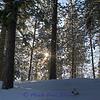 Snow_IMG_2226_H-1