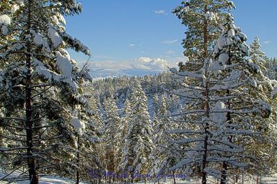 Snowscape_IMG_2292-H