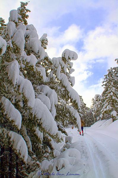 Snow_IMG_2135_H