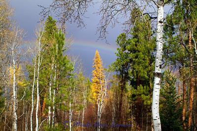 October rainbow in the Bitterroot Valley