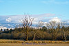 Landscape_HD